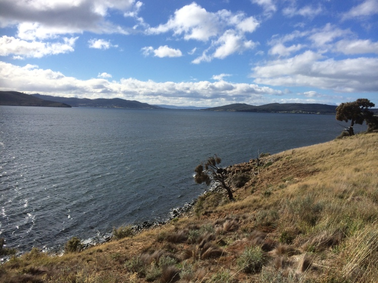 Gellibrand view north