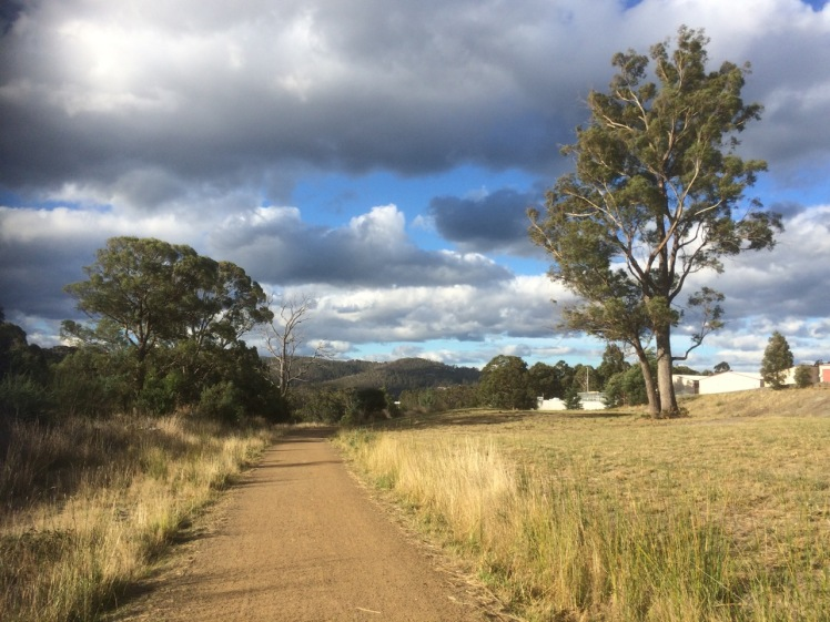 Whitewater Creek track south