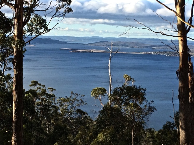 VIEW FROM TINDERBOX HILLS OVER RALPHS