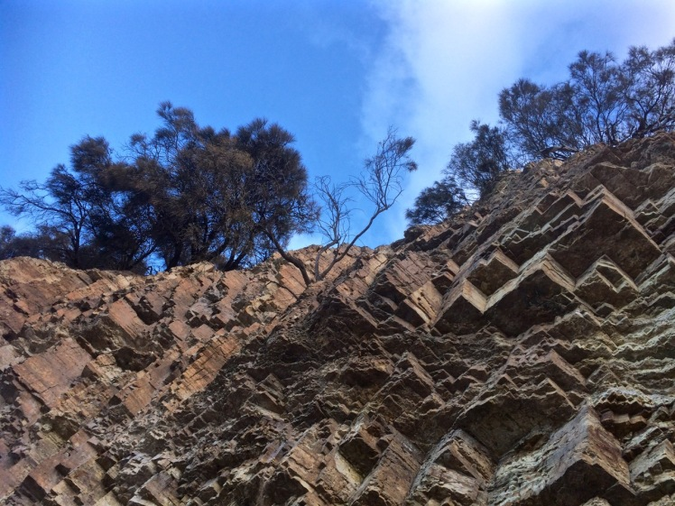 Fossil Cove looking up
