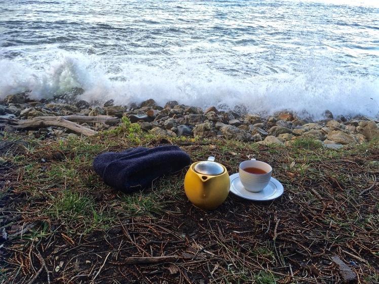 Tea at Flowerpot Coastal Reserve Beach