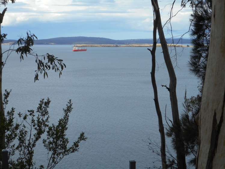 Ship off South Arm from Alum Cliffs