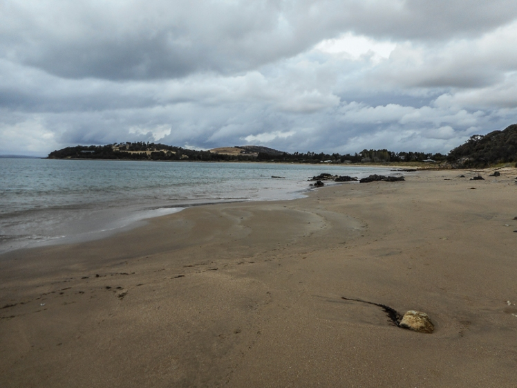 MAY'S BEACH FROM THE POINT.jpg