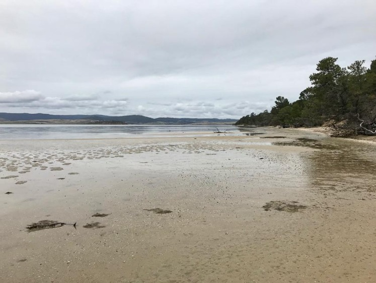 Five Mile Beach on Pittwater Lagoon, looking towards Sandy Point