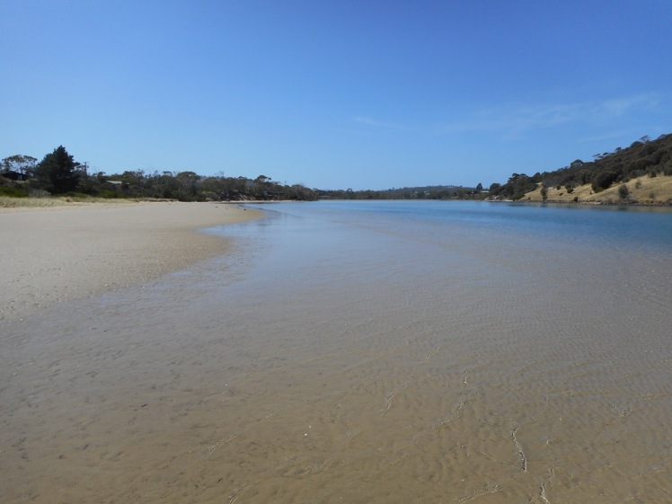 Carlton River (1).jpg