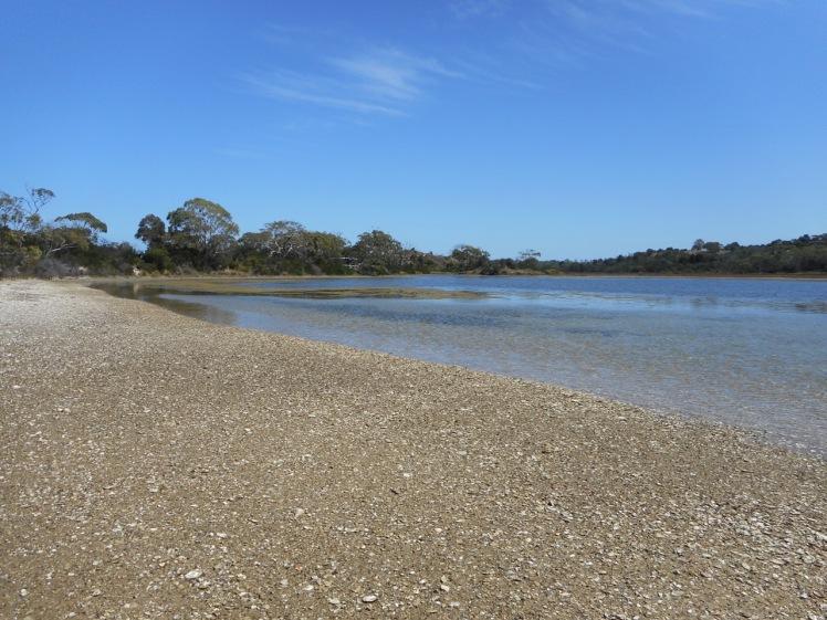 Carlton River (2).jpg
